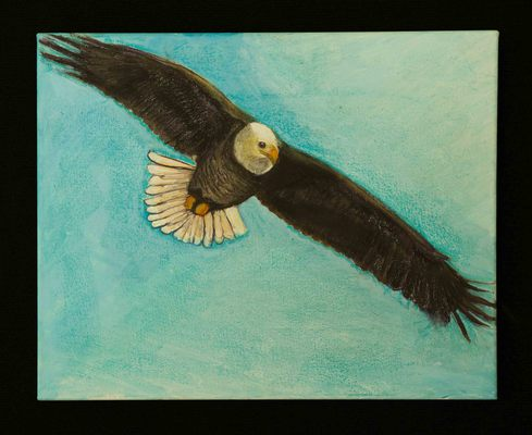 Flying Eagle - 2012  Ruth San Pietro
